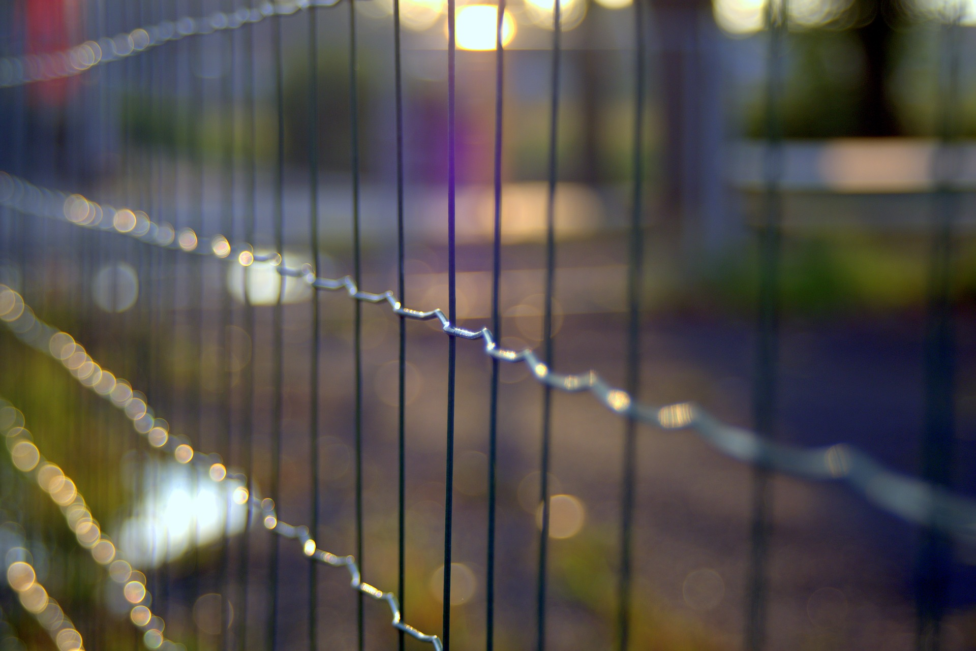 the-fence-1612939_1920